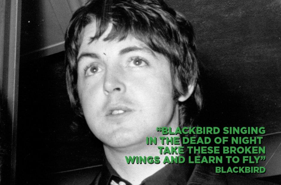 Paul McCartney - Blackbird