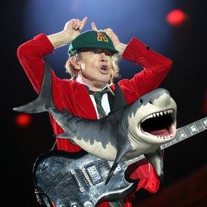 Shark and AC/DC image