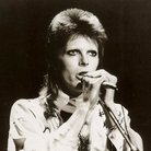 Ziggy Stardust Official press image